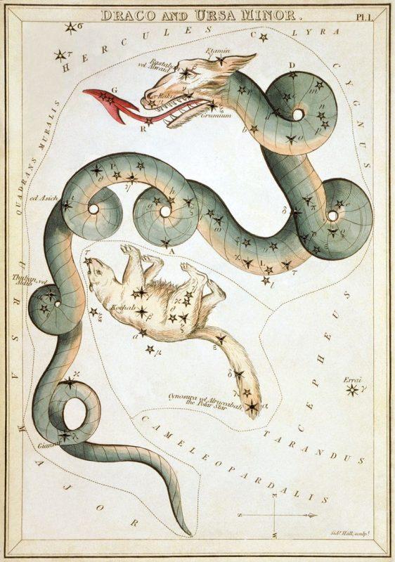 Сузір'я Дракона та Малої Ведмедиці із «Дзеркала Уранії», набору тематичних карток опублікованого у Лондоні, бл. 1825