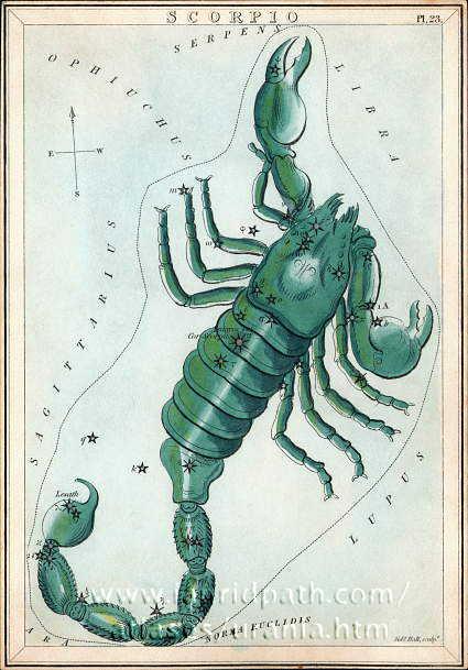 Сузір'я Скорпіона (Scorpio) із «Дзеркала Уранії», набору тематичних карток опублікованого у Лондоні, бл. 1825